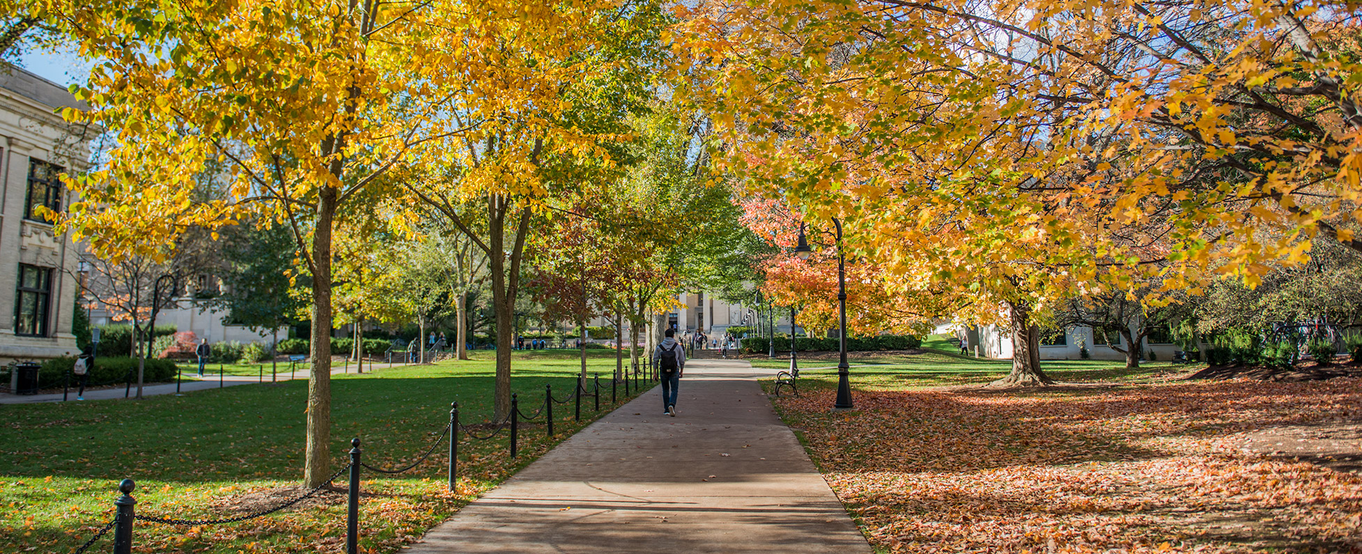 Student walking on campus in the fall